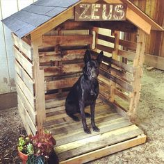 Transcendent Dog House with Recycled Pallets Ideas. Adorable Dog House with Recycled Pallets Ideas. Pallet Dog House, Wooden Dog House, Pallet Dog Beds, Build A Dog House, Dog House Plans, House Building, Recycled Pallets, Wooden Pallets, Table En Bois Diy