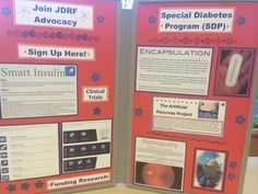 When you are creating a display board for your JDRF Walks, don't forget to show how important JDRF Advocacy is to the research pipeline. Research needs advocacy so that new therapies can continue through the stages to market.