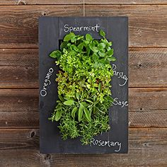 Grow indoor herbs on the wall with a vertical planter and chalkboard paint. This would be perfect for the kitchen!