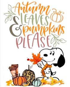 Thanksgiving Pictures, Holiday Pictures, Fall Pictures, Fall Pics, Snoopy Love, Snoopy And Woodstock, Fall Yard Decor, Family Circus Cartoon, Snoopy Pictures
