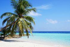 Maledivy info: kdy je nejlepší čas vyrazit? | ZAJÍMAVOSTI Maldives Beach, Maldives Honeymoon, Visit Maldives, Beach Resorts, Vacation Pictures, Beach Pictures, Beach Images, Maldives Voyage, Destination Beauty