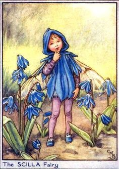 Flower Fairies Garden / Cicely M. Barker / Illustraties | Pasttimebooks.nl