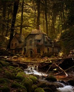 Black Forest, Germany. Looks like where the 7 dwarfs lived, and in fact, the house in which they live IS modeled after this mill!