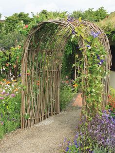 Living Willow Arch With Purple Clematis | HGTV