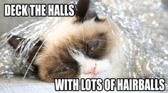 Deck the halls with lots of hair balls ... Falalalala ...