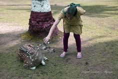 https://flic.kr/p/yDkyjd | Friendly deer on Ross island, Andaman