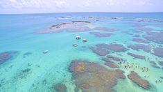 Pontos turísticos de Alagoas Water, Maria Clara, Travel, Outdoor, Costa, Blog, Places To Visit, Restaurants, Boots