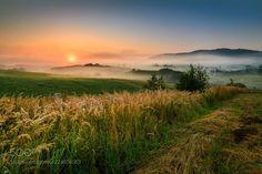 Image Foggy sunrise by januszblasz in 22082017 album Cool Landscapes, Photos Of The Week, Landscape Photography, Travel Photography, Nature Photos, Land Scape, Cool Photos, Sunrise, Mountains