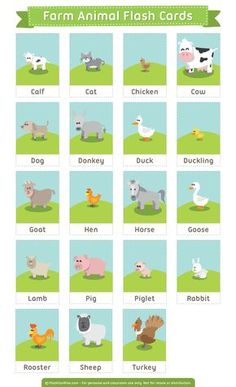 Free printable farm animals flash cards. These are suitable for teaching reading, ESL, etc. Download them in PDF format at http://flashcardfox.com/download/farm-animals-flash-cards/