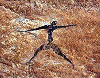Cave painting Algeria