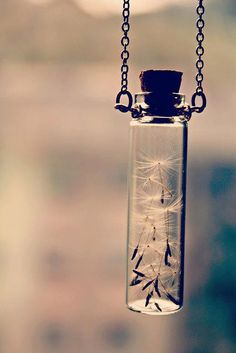 Wishes in a bottle! Love this picture :)