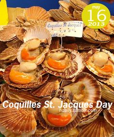 Coquilles Saint-Jacques Recipe - the best Scallop Recipe From French Classical Cuisine! Fish Recipes, Gourmet Recipes, New Recipes, Cooking Recipes, Best Scallop Recipe, Scallop Recipes, Saint Jacques Recipe, Coquille St Jacques, Holly Brown