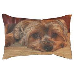 #Cute Yorkshire Terrier Puppy Dog Pet Bed - #yorkshire #terrier #puppy #terriers #dog #dogs #pet #pets #cute #yorkshireterrier