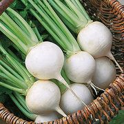 'White Ball Hybrid' turnip is a beautiful pure white. The turnip is mild when it is young and becomes spicier with maturity. Greens are delicious throu Seed Tape, Winter Crops, Turnip Greens, Home Garden Plants, Root Vegetables, Eating Raw, Planting Seeds, Tropical Plants, Gardens