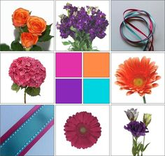 Turquoise, Fuchsia, Orange & Purple Inspiration