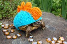 寒くなってきたのでセーターを着た動物や生き物画像