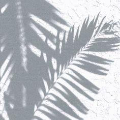 Summer shade // via @abbyycox