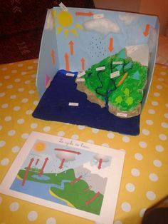Once again, the water cycle is introduced, however this time it is a little different. Instead of just telling the students what the water cycle is, this project allows students to assemble a model of what it should look like. Montessori Activities, Science Activities, Science Projects, School Projects, Projects For Kids, Activities For Kids, Weather Activities, Class Projects, Science Experiments
