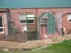 Cat Enclosures for your kitty's safety.  Make sure that it has weather proof things to climb, a shelter, and plenty of fresh food and water.