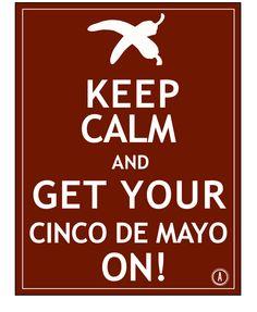 Cinco De Mayo Poster Ideas