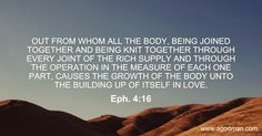 Eph. 4:16 Out from whom all the Body, being joined together and being knit together through every joint of the rich supply and through the operation in the measure of each one part, causes the growth of the Body unto the building up of itself in love. Bible Verse quoted at www.agodman.com