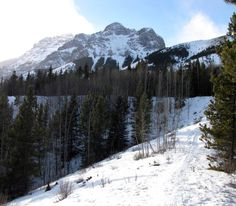 Mount Kidd from the Village Loops Snowshoe Trail in Kananaskis Country, Alberta, Canada.