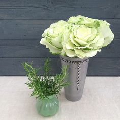 Ornamental cabbage and rosemary in new vases - the big one has a bit of black & white baker's twine around it.  Styling and photography © Ingrid Henningsson for Of Spring and Summer.