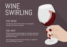 The Importance of Swirling Wine