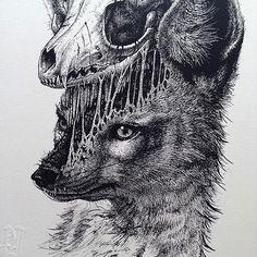 paul-jackson-ilustracao-zupi-12
