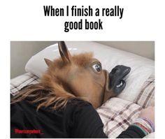 Lol but the picture makes me laugh. Tumblr Stuff, Funny Tumblr Posts, Best Of Tumblr, Bojack Horseman, Funny Pins, Funny Stuff, Random Stuff, Laughing So Hard, Laughing Emoji