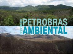 Petrobras lança seleções públicas para projetos sociais e ambientais