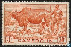 Cameroon [CMR] - Bult Beef 1946