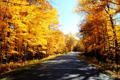 Why Fall is the Best Time to RV | www.billplemmonsrv.com