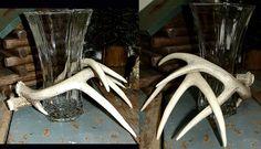 deer antler wedding ideas | ... Us.Com Real Deer Antler Centerpiece Vase Rustic Wedding Mantel Piece