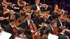 Konzertszene: Cellisten und Geiger des NDR Sinfonieorchesters beim Eröffnungskonzert des Schleswig-Holstein Musik Festivals 2014.