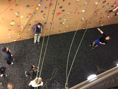 """After the NovaCare Ribbon Cutting yesterday, the Park Ridge Chamber's Young Professionals Group headed over to the climbing wall at FFC Park Ridge to show off their skills! Guests enjoyed appetizers and refreshments as they """"got their climb on""""!"""