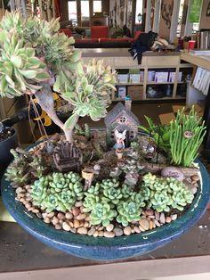 Succulent fairy garden pottery miniature garden