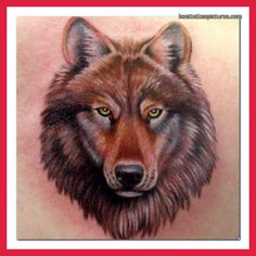 Best Wolf Tattoo Designs | wolf-tattoo-designs-pictures-photos-pics-photos-videos-ideas-designs ...