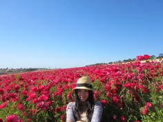 me ;) surrounded by red blooms @ flower fields