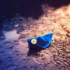 Paper Boats Photography Pictures 56 New Ideas Rain Photography, Creative Photography, Inspiring Photography, I Love Rain, Miniature Photography, Rain Art, Under The Rain, Nature Wallpaper, Mobile Wallpaper