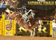 NFR 2016