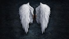 angel, wings, giorno, wallpaper