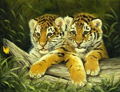 Linda Picken Art Studio / Two Tiger Cubs