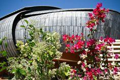 L'Auditorium Parco della Musica in fiore.