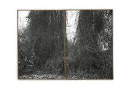 "<p>""eine Quersumme""<br /> with Ulrich Riedel<br /> 25th January – March 23rd 2013<br /> Berlin Art Projects, Berlin</p> <p></p> <p><em>Rummelsburger Bucht, Berlin </em>2012<br /> diptych, two gelatin silver prints<br /> 102 x 67 cm each<em><br /> </em></p>"
