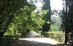 Foto de Parque Municipal Vivero Cosme Argerich, San Clemente del Tuyu
