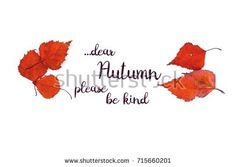"""Close-up photo of a six orange autumn leaves isolated on white background with the inscription: """"...dear Autumn please be kind"""""""