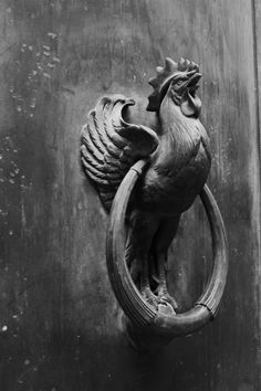 """ivory-black-again: """"sleepydrummer: """"marionblank: © Marion Blank, Paris (bibliothèque richelieu, notes on doors), 2013 """" Just because I like chickens.. """""""
