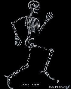 ➡️Ossos do corpo humano. ⠀ É apaixonante as obras de @aaronkuehn. ⠀ ✅Curta e siga @PhDPTCoach ⠀  #phdptcoach #anatomia #aaronkuehn #fisioterapia #fisiolove #fisioamor #sucesso #fisioterapeuta #fisioterapiaesportiva #fisoterapiadermatofuncional #fisioterapiaestética #fisioterapiacardiorespiratória #fisioterapiaintensiva #physicaltherapist #physicaltherapy #fisioterapiacomamor #fisioterapiaporamor #fisiolife #fisio #fisiovida #fisioterapiainfantil #fisioterapiapelvica #fisioterapiaaquati...
