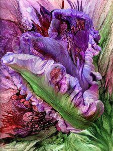 Alcohol Ink Mixed Media - Wild Tulip by Carol Cavalaris